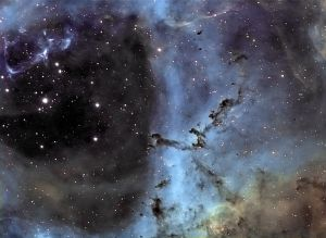Filaments of dust and Bok globules in the Rosette Nebula