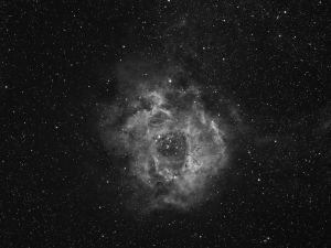 Widefield view of the Rosette Nebulae in Ha – NGC2237